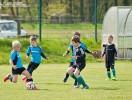 G-Junioren Punktspiel RW WER_Preussen Eberswalde