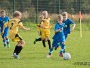 Punktspiel RW WER_Einheit Zepernick II